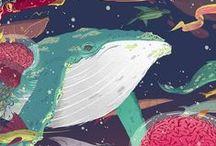 Animalia: Whale... / by Esperanza Wild