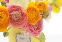 holiday- mother's day / by Amandita Designs
