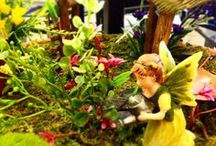 Fairy & Miniature Gardening / Flowerland in Grand Rapids Michigan has everything you need to create your own fantasy garden.  Make an enchanting whimsical landscape with us. Flowerland is chock full of plants to beautiful accessories & homes for Fairies & Gnomes all perfectly selected to make your tiny garden come to life.