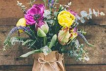 bloom / Pretty florals