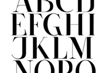TYPE / fonts & typography.