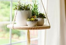 """Home Decor and Design / READ BEFORE PINNING! 1. Do not pin more than five pins at a time. THERE IS A 10 PIN LIMIT PER DAY.  2. Pins MUST link to their original websites or recipes (check to make sure it's a legitimate site before you pin and DO NOT pin just a google or yahoo image) 3. Pins may not be """"uploaded by user"""" unless they are your original content. 4. No advertisements, please. Please follow these rules so we can make this a truly wonderful community board."""