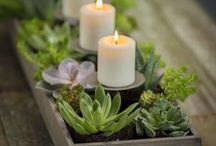 ✽ Candles / Light up with DIY candles, indoor and outdoor projects, mason jars, citronella, wedding favors and more!