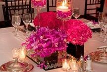 Party Planning / Looking for ideas for my NDI Gala in the spring.