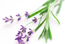 Holistic Living / Living the natural way without chemicals, additives, colours etc.