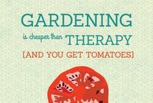 ✽ Quotable / Quotes for garden loving peeps.