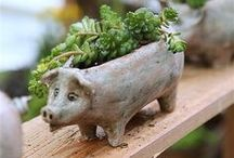 ✽ Quirky Gardening / Creative and quirky gardening ideas. Unique planters, plants you can wear, weird plants, kooky projects...all found here.