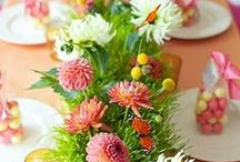 Easter Ideas and Crafts / Celebrate the arrival of life this year with projects for the whole family.