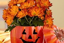 Halloween Flower Decorating Ideas / Halloween is the night of October 31, the eve of All Saints' Day, commonly celebrated by children who dress in costume and solicit candy or other treats door-to-door. Enhance your Halloween Decorations with our DIY centerpieces and arrangement ideas.