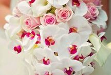Orchid Creations / Many ways to use orchids for your events.