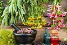 ✽ Natural Healing / Herbal remedies, tinctures, salves, and teas. Nature is powerful. / by Stephanie @ Garden Therapy