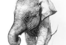 Art - Elephant Paintings (for my mother) / Great Art