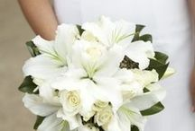 Blooming in white / Ideas for timeless elegance. Shop wholesale white flowers www.bloomingmore.com