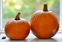 Pumpkin <3 / by Tiffany Caler