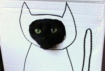 Cat Meow! / by Maj J.
