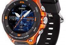 Casio / Relojería