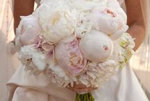 Weddings / by Jeanette O'Reilly