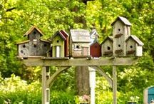 Bird houses / by Paula Gallagher