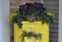 Gardening/Plants/Landscaping/Flowers / by Cheryl Ballard