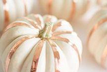 Autumn & All Hallows Eve / by Sarah Jantzen