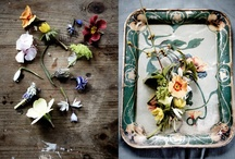 The Avant-Gardener / Botanical blooms of burgeoning beauty / by Fran Brown