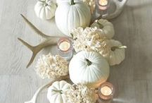 Fall / Send autumn warmth this season with richly colored fall flower arrangements