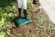 Final, sorry, Barack obama pussy lawn jockey yes Yes