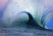 Oceans / by Marti Schmidt