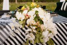Black and White Striped Styled Shoot
