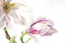 ART: Get Creative / Art tutorials and Art Supplies