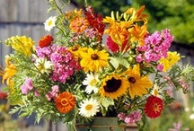❤ ✿Flower arrangements✿❤ / by Linda And Rudy
