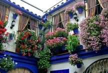 ❤ ✿ Window boxes ✿❤ / by Linda And Rudy