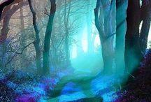 I sentieri della luce