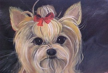 ❤ ✿ Sweet yorkies! ✿❤ / by Linda And Rudy