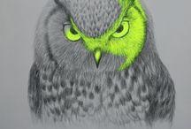owls / by Margi Bartling