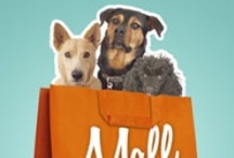 Mall Dogs - The Book / Mall Dogs is the story of Lucky Paws and their mission to break stereotypes about what a shelter can be. The book is about their journey to change the perceptions of the municipal shelter and get save more animals in the process.