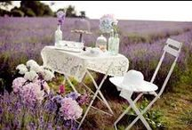 """Lavender Lane.¸¸.✿ / """"As Rosemary is to the Spirit, so Lavender is to the Soul"""""""