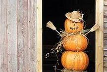 halloween. / by Samantha Parmerlee