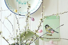Spring Decor / by Denise Miller
