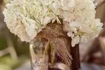 Mason Jars / by Lindsay Shields