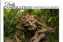 Daily Enspiration / What Enspire's me from Day to day.... / by Enspired Visions