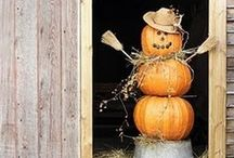 Fall Decor, Crafts, & Recipes / by Hanan Webster // EatCraftParent