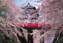 ♡ Japan