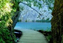 Pathways, Stairs & Waterfalls / by Ayleyaell Kinder