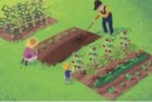 Little Gardening / first steps in gardening