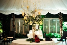 Winter Weddings / Elegant and cool
