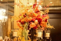 Fall Weddings / Beautiful colors and the perfect weather