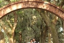 Savannah / We LOVE Savannah and here's why...