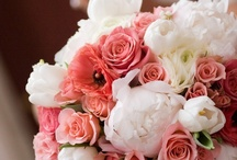 Pink/ Blush / Such a popular color palate this season