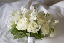White/ Cream/ Ivory / It's all about texture when you remove color and we love it